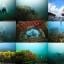 [2014.07.26] 빅블루 4주년 투어 및 해양실습